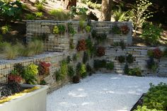 Gabion Wall Design, Backyard Ideas, Garden Ideas, Gabion Retaining Wall, Lanscape Design, Terraced Garden, Privacy Walls, Luxury Landscaping, Outside Patio