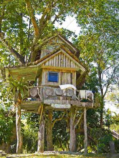 tree houses - Google Search