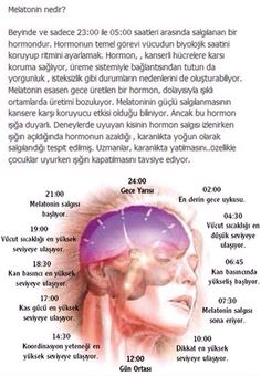 What is Melatonin - Gesundheit Diet And Nutrition, Health Diet, Health And Wellness, Health Care, Health And Beauty, Health Fitness, Yoga Meditation, Yoga Inspiration, Low Carb Raffaelo