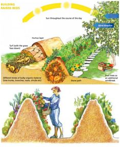 Vegetable Garden Planning, Veg Garden, Vegetable Garden Design, Veggie Gardens, Vegetable Gardening, Organic Gardening, Vegetable Planters, Gutter Garden, Hydroponic Gardening