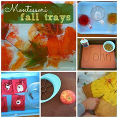 Montessori Fall Trays - WIldflower Ramblings