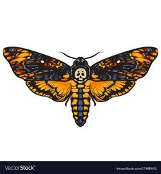 Hand drawn vector illustration isolated on white background. Skull moth butterfly design for tattoo, t-shirt print, poster, coloring book. Moth Tattoo Design, Moth Drawing, Skull Moth, Deaths Head Moth, Butterfly Art, Butterfly Design, Intricate Tattoo, Hawk Moth, Norse Tattoo
