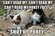 """""""Pokey Face"""""""