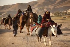 """""""A caravan of Kuchi nomads on the move in Ghor province, in central Afghanistan."""""""