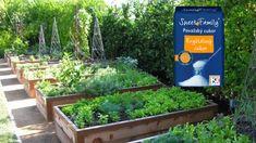 Od tohto momentu je obyčajný cukor v mojej záhrade považovaný za poklad: 1 kg vystačí na celú sezónu, ten účinok je na nezaplatenie! Korn, Ale, Plants, Gardening, Flowers, Lawn And Garden, Ale Beer, Plant, Ales