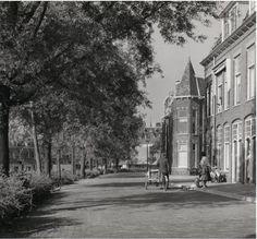 Schelpenkade ter hoogte van de 3 oktoberstraat.
