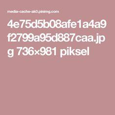 4e75d5b08afe1a4a9f2799a95d887caa.jpg 736×981 piksel