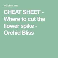 CHEAT SHEET - Where to cut the flower spike - Orchid Bliss Orchid Care After Flowering, Orchid Plant Care, Orchid Plants, Indoor Orchids, Indoor Plants, Siopao Recipe, Berry Trifle, Hanging Flower Pots, Apple Vinegar