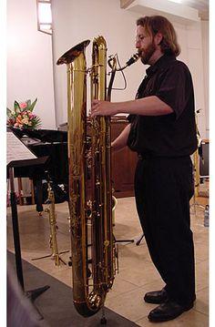 Subcontrabass saxophone.  Plays 2 8va below a tenor.  That's a big horn.