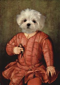 I am a fan of XVII-IX centuries' art. I am travelling and visiting European and Russian art museums, where the great collections of art are Custom Dog Portraits, Pet Portraits, Photo Animaliere, West Highland Terrier, Pet Costumes, Animal Heads, Russian Art, Maltese Dogs, Pet Clothes