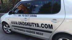 Kutyaiskola Budapesten házhoz megy - Okoskutya