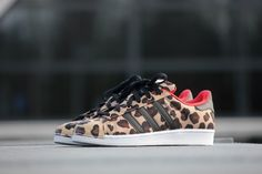 Adidas Superstar Shell Toe Pack - S75185