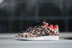 Adidas Superstar Shell Toe Pack - S75185