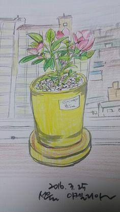 선물로 받은 꽃 화분~~좋다^^*