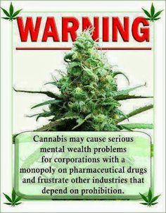 ¿A quién le molesta la #marihuana?