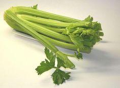 Celery (Apium Graveolens) Health Benefits | Brett Elliott's Ultimate Herbal Detox