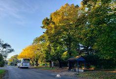 En abril 2020 Ranelagh como el resto del país en cuarentena - Ranelagh, Berazategui, Buenos Aires Country Roads, Buenos Aires, Parking Lot, Parks, Pictures