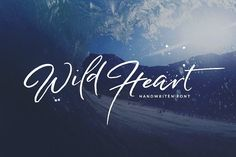 Wild Heart - Brush Font Set 40% OFF by Dirtyline Studio on @creativemarket