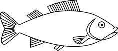 Easy long Fish Drawings | Fish Outline 3 clip art