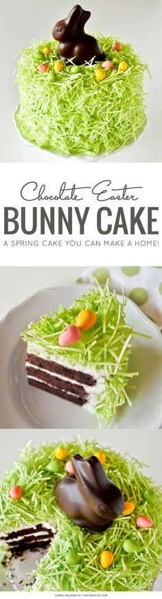 Chocolate Easter Bunny Cake - how to decorate this easy cake for Easter dessert, using edible grass, a chocolate Easter bunny and candy eggs. Easter Cake Easy, Easter Bunny Cake, Chocolate Easter Bunny, Easter Treats, Easter Food, Easter Eggs, Bunny Cakes, Bunny Bunny, Easter Recipes