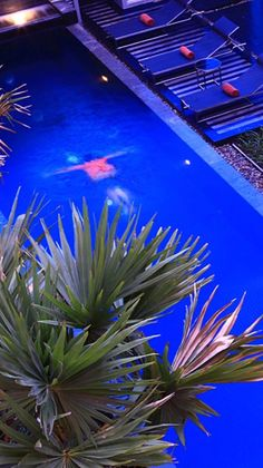 #Luxury Pools