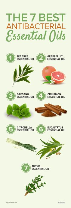 Need a more natural alternative to antibiotics? Here are seven powerful essential oils that naturally fight off bacteria. Read the full article here: http://paleo.co/antibacessentialoils