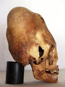 Results from the first 3 Paracas skulls tested, released on June 14 2012 have given us C-14 (carbon 14) dates of approximately 2300 years of age for all three skulls, plus or minus 30 years. This confirms that the skulls are ancient, and that these people existed as a genetically distinct group. The Nazca people, famous for having made the Nazca Lines moved into the Paracas area at approximately 100 CE.
