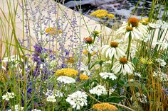 The Al Fresco summer garden at the RHS Hampton Court Palace Flower Show 2014 / RHS Gardening