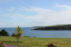 """Harborview and Courtmacsherry Point,  Co. Cork, Ireland,  from """"The Pink Elephant""""."""