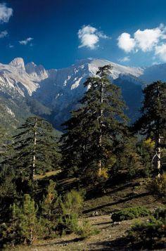 Mount Olympus - Pieria Regional Unit - Greece