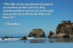 The life of an uneducated man is as useless as the tail of a dog which neither covers its rear end, nor protects it from the bites of insec. Warren Zevon, Chanakya Quotes, Jason Newsted, Special Kids, Famous Architects, What Can I Do, Dyslexia, Learn To Read, The Life