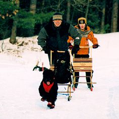 Mushing Package | Dog Sled Kit | Harness Your Dog and Play