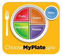 In order to have a balanced meal, dividing your plate into the different food groups can help. This plate has fruits and vegetables as half of the plate, then grains and protein both have a forth, with a dairy product on the side.