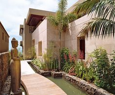 Modern use of papyrus as landscape element