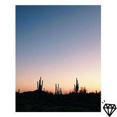 Entre cactos!  Inspiração do insta: @ashleytkim  #inspiration #arizona #phoenix #instatravel #instalike #travelgram #travel #traveller #travels #mochileros #wanderlust #trip #backpacking #backpack #eua #northamerica #planet #unitedstates #cactus #prata925 #pulseirismo #earcuff #earjacket #jewellery #jewelry #jewelrygram #instajewelry #lifestyle #goodvibes #nature by claralinoacessorios