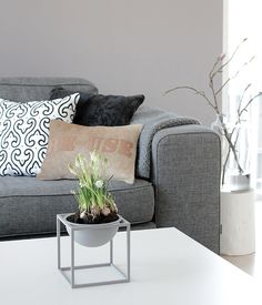 I love the grey couch with the white, black and neutral cushions. Grey walls: Check. Grey sofa: check. Gorgeous pillows: check.
