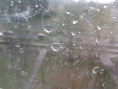 Lało tak porządnie, że postanowiłam uwiecznić to na zdjęciu