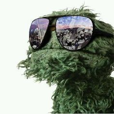 Oscar the grouch!!
