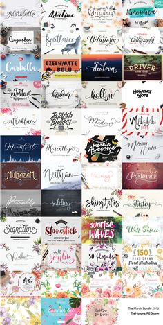 The March Script Font Bundles | TheHungryJPEG.com