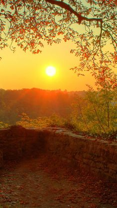 Nature Country Retro Wall Sunset Landscape #iPhone #5s #wallpaper