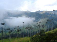 paisajes de colombia | Paisajes de mi país: Colombia - Taringa!