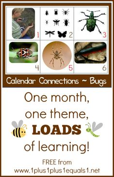 Bug Theme Calendar Connections {free} from @{1plus1plus1} Carisa