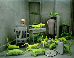Sandy-Skoglund-photography-5