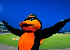 March 6: Oriole Bird at Spring Training