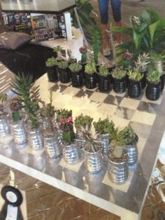 An outdoor chess set made from potted succulents. Chess Board Table, Chess Boards, Succulent Pots, Potted Succulents, Rock Garden Design, Garden Crafts, Garden Inspiration, Home Projects, Chess Sets