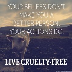 Live and let live.  Sentient beings have natural instinct to be born wild.