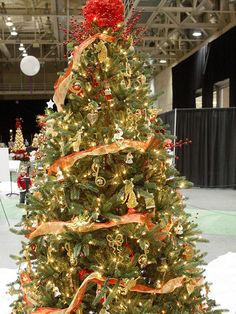 Red-and-Gold Christmas Tree  Shimmery ornaments and eccentric accents give this traditional red-and-gold Christmas tree gusto. Soft white lights, chorister ornaments, and sprigs of plastic holly look fancy and festive, while the red ruffle tree topper, thick strands of gold and red sheer ribbons, and glittery gold music note, angel, and bow ornaments add a distinctly modern feel.