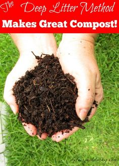 The Deep Litter Method is a way to keep your duck and chicken coop run clean and healthy for your flock. Control the flies and keep your eggs clean. Plus it is much less work! It makes great compost for your garden! This is a must for your backyard or homestead flock. http://www.lifeisjustducky.com/deep-litter-method/