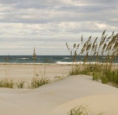 "Get the ""Insider Tips While Vacationing in Emerald Isle NC"" from the Emerald Isle Realty Travel Blog"