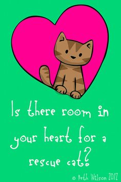 Is there room in your heart for a rescue cat? by Beth Wilson